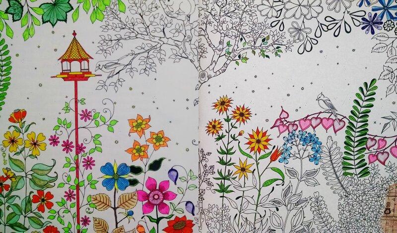 ideias jardim secreto:Um livro super bacana para colorir é o Jardim Secreto da ilustradora