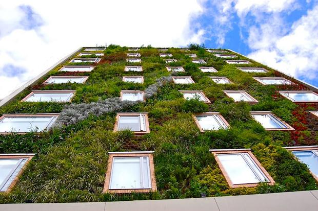 Jardim-vertical-reveste-prédio-com-mais-de-25-mil-plantas-Imagem-Inhabitat