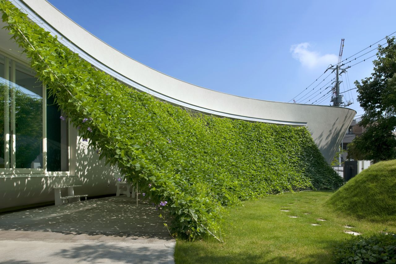 architecture-Green-Screen-House